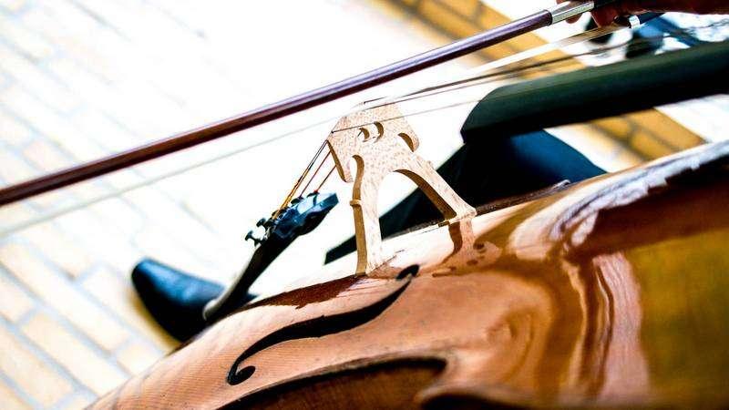 Ensemble Storstrøm, cello, foto: Stéphane Tran Ngoc